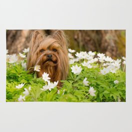 Summer Vibes - Small Yorkie Dog In Spring Forest #decor #society6 #buyart Rug