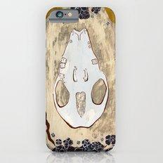 Cycle (Hedgehogs & Flowers) Slim Case iPhone 6s