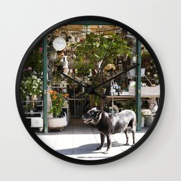 Dog in the Flower District, Paris - travel photography Wall Clock