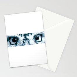 Little Owl Eyes Stationery Cards