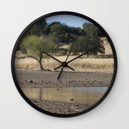 Horseshoe Lake, Chico California Wall Clock