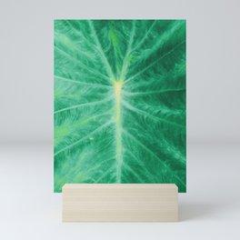 Colocasia Esculenta Mini Art Print