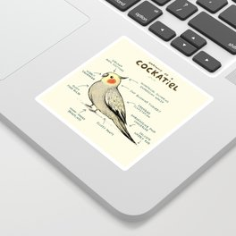 Anatomy of a Cockatiel Sticker