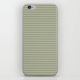 Seafoam Neutral Striped Palette iPhone Skin
