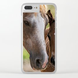 Horse Family Clear iPhone Case
