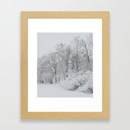 Ekbacke I Framed Art Print