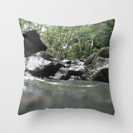 Fish's Take Throw Pillow
