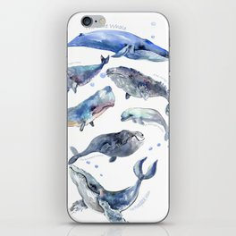Whales, Whale design, whale wall art, sea, marine aquatic animal art, school learning wall iPhone Skin