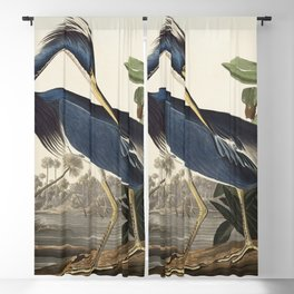 Louisiana Heron from Birds of America (1827) by John James Audubon, etched by William Home Lizars Blackout Curtain