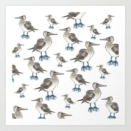 blue foot bobbie pattern Art Print