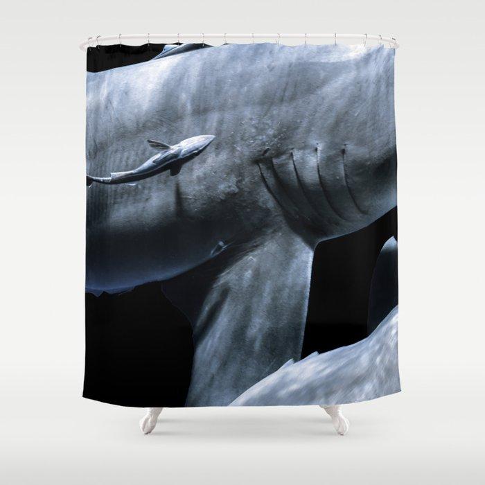 Shark Crossing Shower Curtain