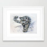 snow leopard Framed Art Prints featuring snow leopard by KOSTART