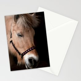 Fjord horse Stationery Cards