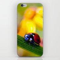 ladybug iPhone & iPod Skins featuring Ladybug  by Vicki Field