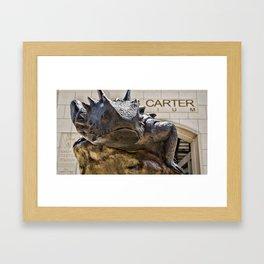 TCU Superfrog #5 Framed Art Print