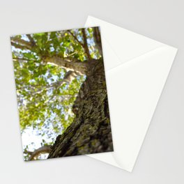 Look On Up. Stationery Cards