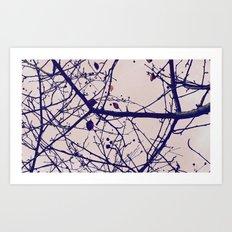 nature's last stand Art Print
