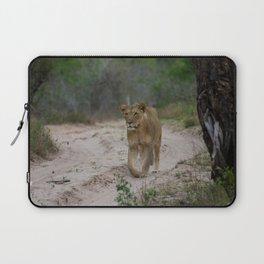 Female Lion at Tembe Elephant Park Laptop Sleeve