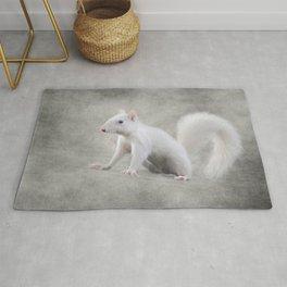 Albino Squirrel Rug