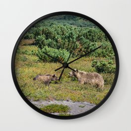 Kamchatka brown bears (mother and cub) Wall Clock