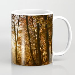 Forest walk in the evening sun Coffee Mug