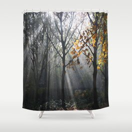 Autumn Sunbeams Shower Curtain