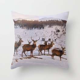 The Gathering of Stags Throw Pillow