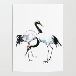 Japanese Cranes, Asian ink Crane bird artwork design Poster