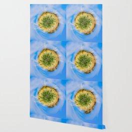 Green wheat - tiny planet Wallpaper