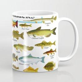 Illustrated New England and  Adirondacks Game Fish Identification Chart Coffee Mug