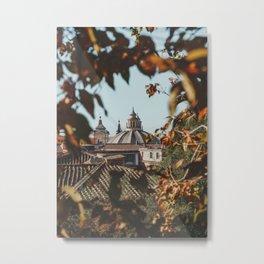 Rome Through the Trees Metal Print