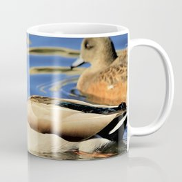 Regal Duck Reflects on the Water Coffee Mug