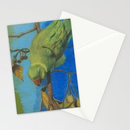 parrot 3 Stationery Cards