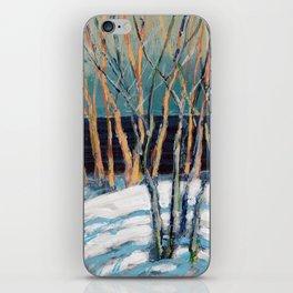 White Birch Grove / Dennis Weber / ShreddyStudio iPhone Skin
