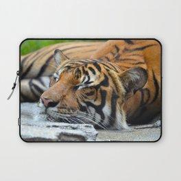Tiger, Tiger Fast Asleep Laptop Sleeve