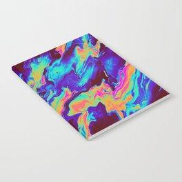 RIPTIDE Notebook