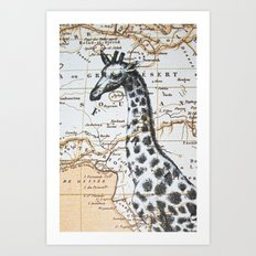 Giraffe in Africa: All Neck  Art Print