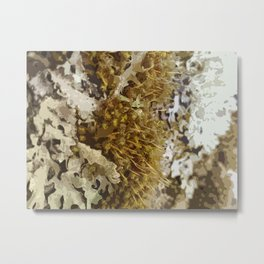 Abstract Moss design 02 Metal Print