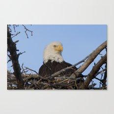 Eagle's Nest Canvas Print