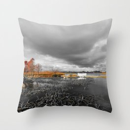 A Moody Winter's Day Throw Pillow