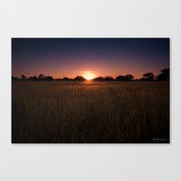 African Kalahari Sunset - Landscape Photography #Society6 Canvas Print
