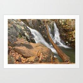 Rose River Falls Art Print