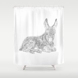 Baby Donkey Shower Curtain