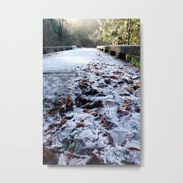 Frosty Bridge & Leaves Metal Print