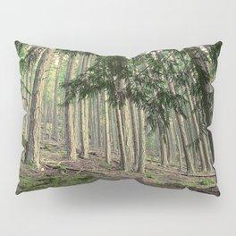 WARM AUTUMN EVENING FOREST Pillow Sham