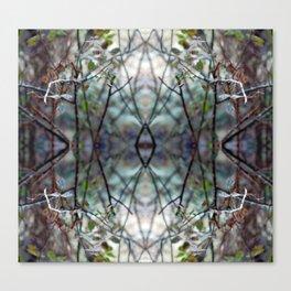 natural geometry Canvas Print