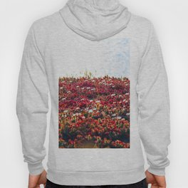 closeup red flower with blue ocean background in summer Hoody