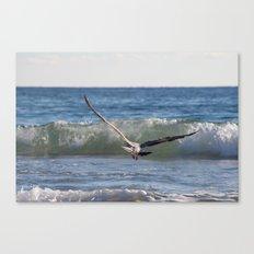Fly Away Gull 6950 Canvas Print