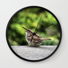 Little Feather Tasting Wall Clock