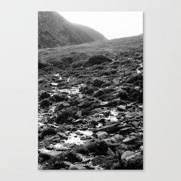 Wet Rocks Canvas Print
